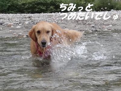 Hakuba2