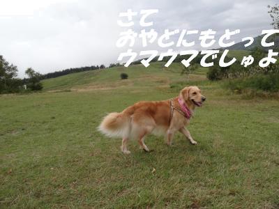Suga9
