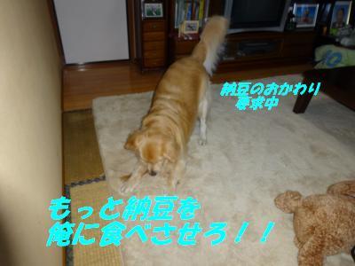 Natto9
