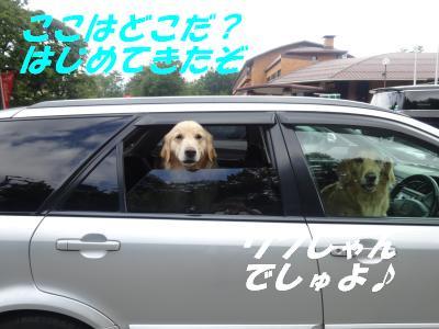 Woofa2